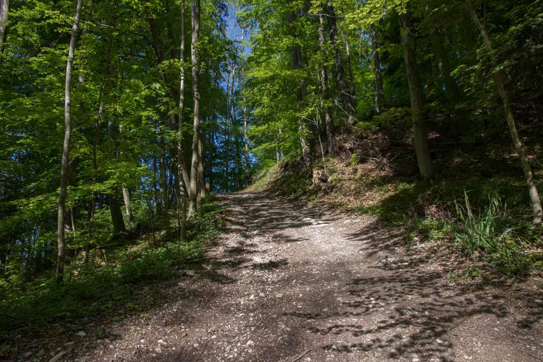 Wanderung auf den Katzenstein (1349m) und auf den kleinen Schönberg (895m)