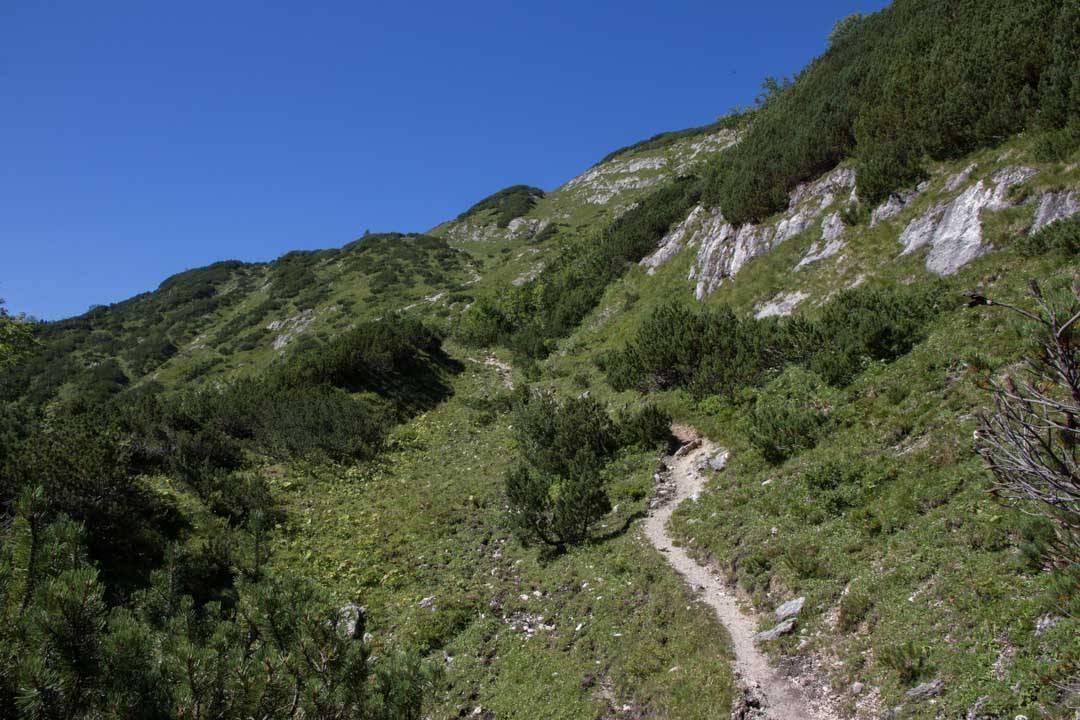 Wanderung vom Offensee auf den Rinnerkogel