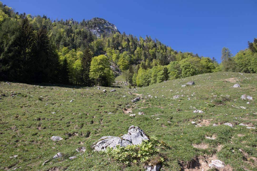 Wanderung auf den Sparber